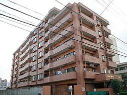 ライオンズマンション錦町[7階]の外観