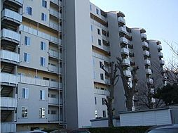 大津シーハイツJ棟[1113号室]の外観