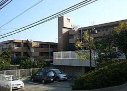 松戸市松戸新田