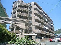 エクセラン・アベニール[5階]の外観