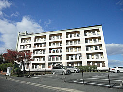 岡田グリーンハイツ[5階]の外観