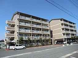 滋賀県愛知郡愛荘町愛知川の賃貸マンションの外観