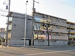 ミカーサ学園前[4階]の外観