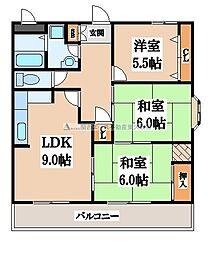 メゾンアコアラム[2階]の間取り