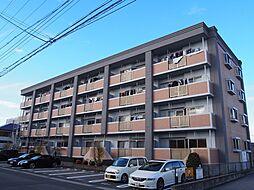 グランド・ステージ桜華 2階[203号室]の外観