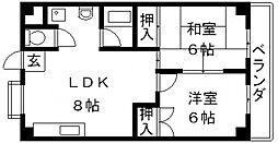 TSUJIHANAビルディング[5B号室号室]の間取り