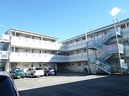 サンスカイまことマンション[103号室]の外観