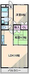 神奈川県横浜市港北区綱島西5丁目の賃貸マンションの間取り