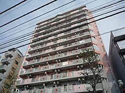 ヴェルビュ新中野[5階]の外観