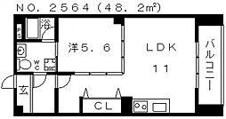 スパジオTOWA[2階]の間取り