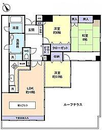 CASSIA 緑ヶ丘[        10階号室]の間取り