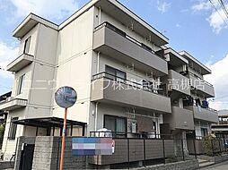 大阪府高槻市芝生町2丁目の賃貸マンションの画像