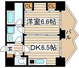 ZEUS20XX[4階]の間取り