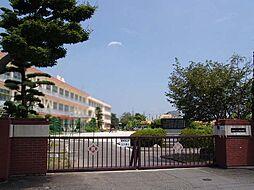 小学校三ツ渕小学校まで1400m