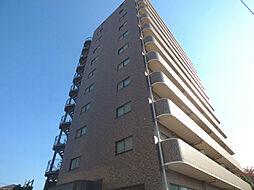 新田第11ビル[10階]の外観