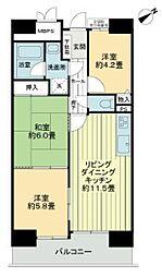 愛知県岡崎市昭和町の賃貸マンションの間取り
