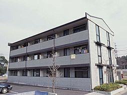 埼玉県さいたま市岩槻区南平野2丁目の賃貸マンションの外観