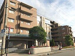 長坂ネスルガゼボ62[2階]の外観