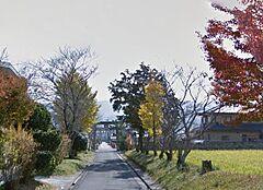 隅田八幡神社への道路です 秋には紅葉でとてもきれいな散歩道になります