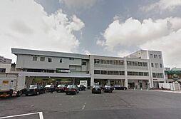 [テラスハウス] 埼玉県さいたま市浦和区領家3丁目 の賃貸【/】の外観