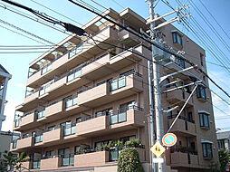 セレナ夙川[401号室]の外観