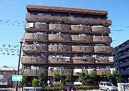 ドミー渡辺[6階]の外観