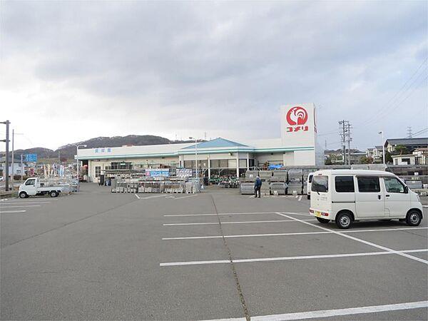 コメリ豊野店(262m)