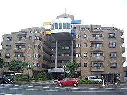 敦賀市蓬莱町