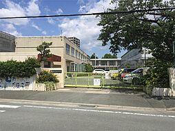 豊橋市立松葉小学校(521m)