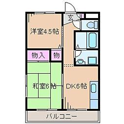 神奈川県川崎市幸区塚越2丁目の賃貸マンションの間取り