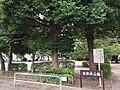 宮原南公園(1...