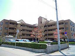 ドマーニ三田横山[206号室]の外観