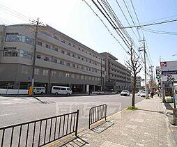 京都府京都市東山区蒔田町の賃貸マンションの外観