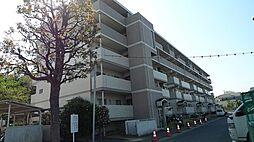 レジエ戸塚深谷[1-317号室]の外観