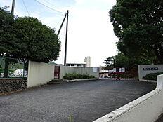 青梅第六小学校 徒歩 約10分(約796m)