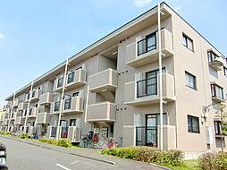埼玉県さいたま市見沼区東大宮1丁目の賃貸マンションの外観