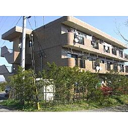 長野県佐久市伴野の賃貸マンションの外観