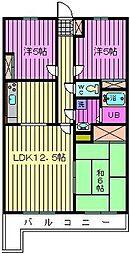埼玉県さいたま市大宮区櫛引町1丁目の賃貸マンションの間取り