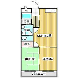 愛知県名古屋市中川区万場3丁目の賃貸マンションの間取り