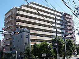 ライオンズガーデン亀有[7階]の外観