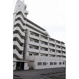 エレガンス綾瀬5[6階]の外観