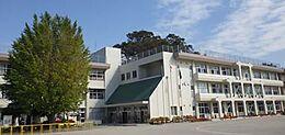 土浦市立東小学校(41m)