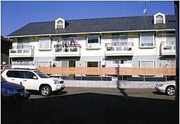 神奈川県茅ヶ崎市本村2丁目の賃貸アパートの外観