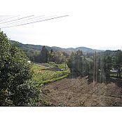 敷地内には家庭菜園もできるスペースも十分ございます