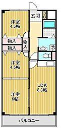 パピオツインタワー[5階]の間取り