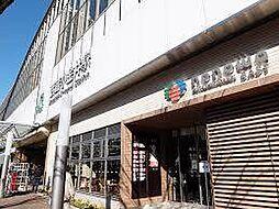 [一戸建] 東京都小金井市本町2丁目 の賃貸【/】の外観