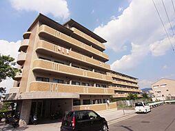 フレアコートコスモ[3階]の外観