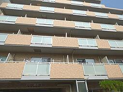 サニープレイス[4階]の外観