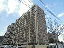 ハイマート若松[11階]の外観
