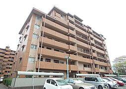 茅ヶ崎グランドハイツC棟[4階]の外観